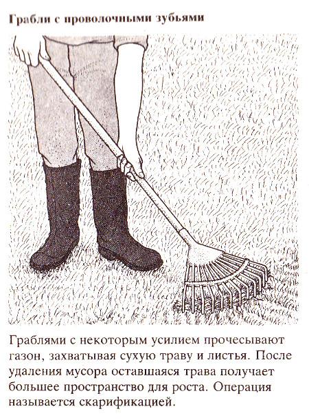 Специальные инструменты для сада