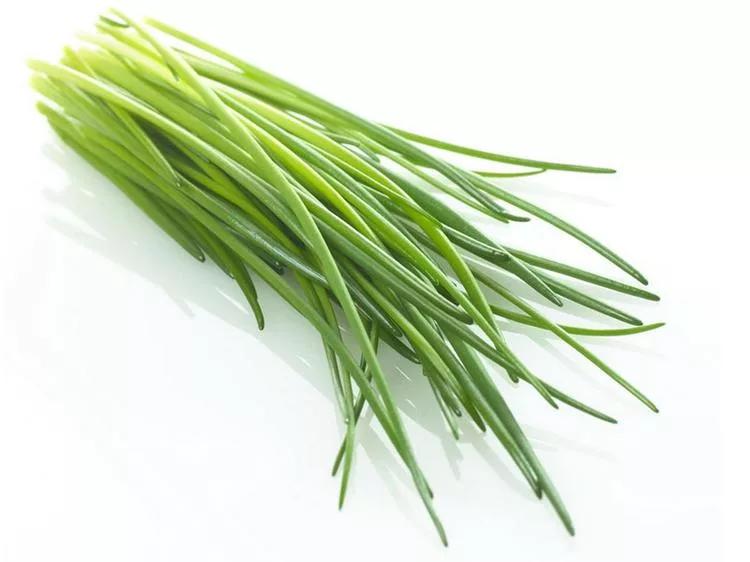 Обработка луковых овощей