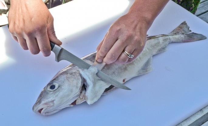 Обработка чешуйчатой рыбы
